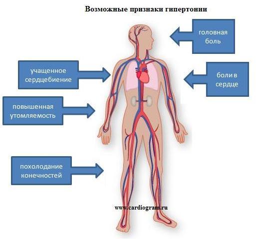 Изображение - 140 100 давление у мужчин причины simptomy_gipertonii__1