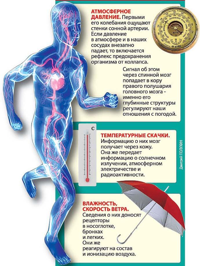 Пониженное атмосферное давление: влияние на организм человека, на его самочувствие. Какое атмосферное давление считается нормальным и пониженным, при каком давлении болит голова?